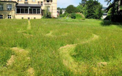 Klinik Hohe Mark: Rainer Jung erklärt das Wiesenlabyrinth im Park der Klinik